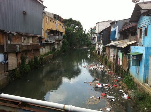 ゴミが浮く川