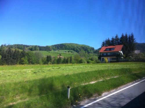 オーストリアの道