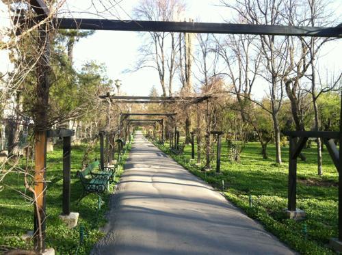 ベルファストの公園